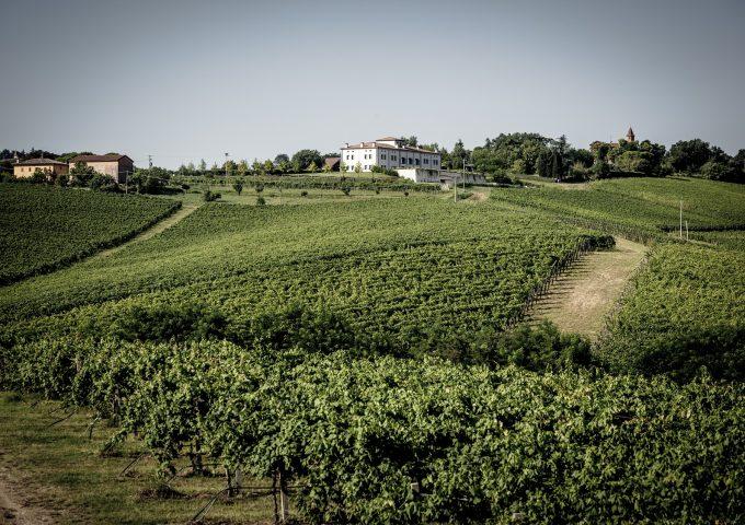 Vivi un'esperienza unica con degustazione gourmet tra i vini di Umberto Cesari!